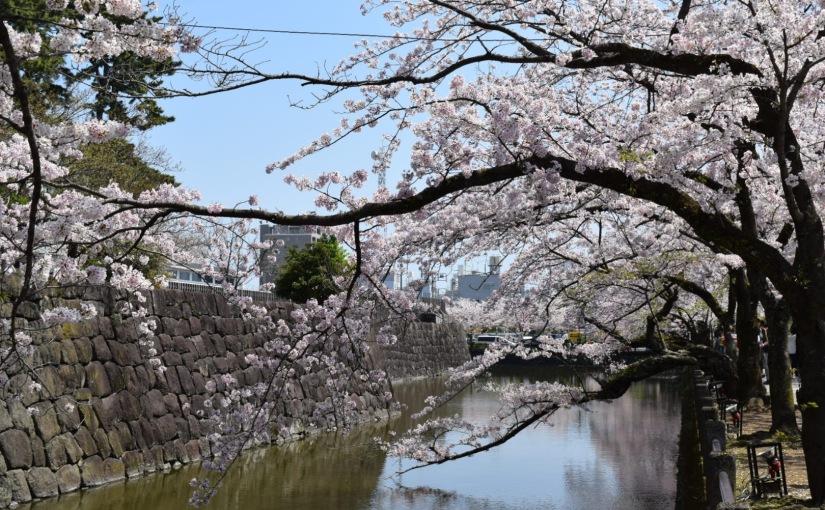 Adventures in Patience: Tokyo,Japan✈️